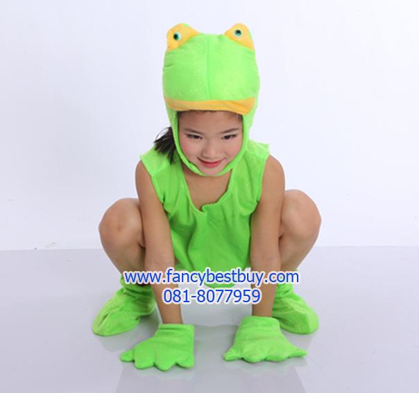 ชุดแฟนซีกบเขียว แบบแยกชิ้น ชุดแฟนซีสัตว์เด็กหรือชุดมาสคอต สำหรับการแสดง ใช้ได้ทั้งเด็กชายหญิง สำหรับเด็ก 115-140 ซม. (เสื้อ+กางเกง+หมวก+ถุงมือ1คู่+ ถุงเท้าสัตว์ 1 คู่)