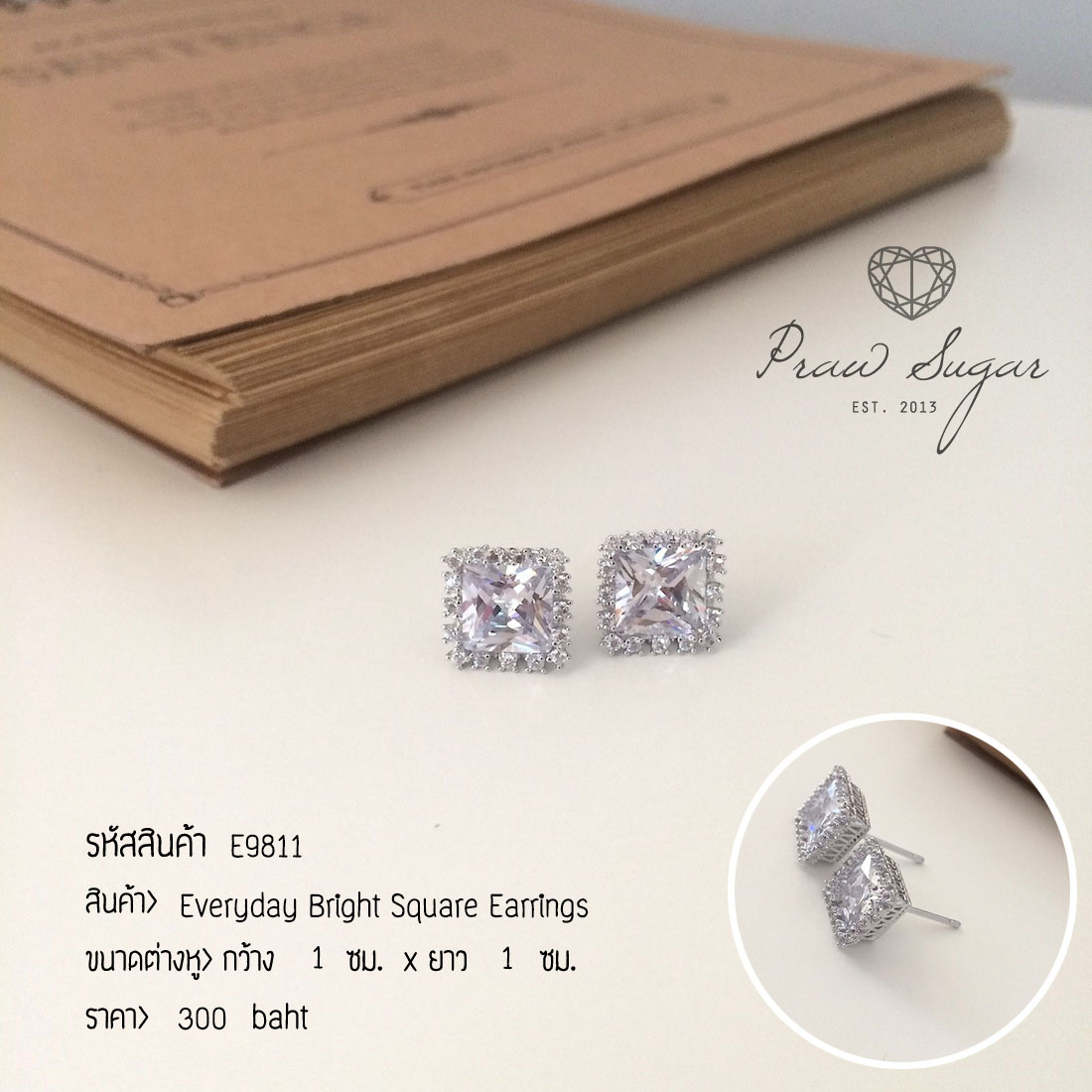 Everyday Bright Square Earrings