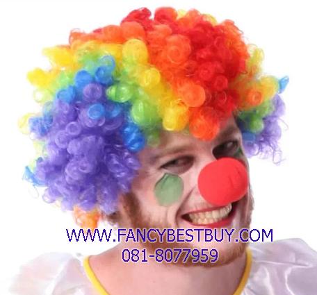 วิกผมตัวตลก, วิกผมแฟนซี, วิกผมหลากสี สำหรับชุดตัวตลก, ชุดโบโซ่, Clown, BOSO
