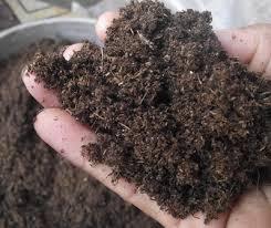 พีทมอส (Peat moss) 70ลิตร 10 กส.