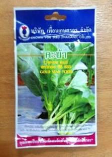 คะน้า ดาวทอง ทีซี635 Chinese Kale เพือนเกษตร