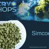 Simcoe Cryo Hops (LupuLN2 Pellet) - 2oz.