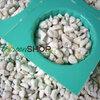 เพอร์ไลต์ (Perlite) 100 ลิตร นำเข้าจากประเทศ จีน