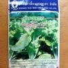 กาดขาวไดโตเกียวเบกานา 6803 เพื่อนเกษตร