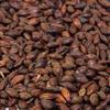 Belgian coffee malt - 1LB
