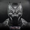 Model Black Panther 1/2