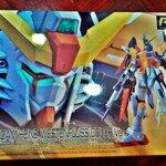 (ฝากขายนะครับ)RG 1/144 Destiny Gundam Heine Custom (Gunpla expo 2013)