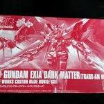 (C3 X Hobby) HG BF 1/144 Exia Dark Matter (ฝากขาย)