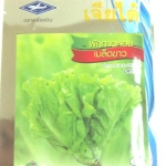 กาดหอมเมล็ดขาว Lettuce เจียใต๋