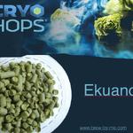 Ekuanot Cryo Hops (LupuLN2 Pellet) - 2oz.