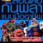 หนังสือ สอนต่อกันพลาแบบมืออาชีพ Thai Edition