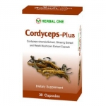 Herbal one ถังเช่า ตังถั่งเฉ้า-พลัส 30 เม็ด Cordyceps-plus