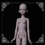 1/4 Girl Body