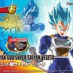 Figurise-Standard:Super Saiyan God Vegita 2500yen
