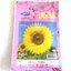 ดอกทานตะวันสีเหลือง Sun flower เจียใต๋ thumbnail 1