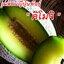 เมล่อน คิโมจิ Japan Melon Kimoji 10 เมล็ด thumbnail 1