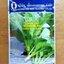 คะน้า ดาวทอง ทีซี635 Chinese Kale เพือนเกษตร thumbnail 1