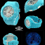 นาฬิกา Casio Baby-G Standard Ana-Digi รุ่น BGA-170-2BDR thumbnail 5