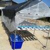 ชุดปลูกสำเร็จ NFT 120(รางเปิด) ขนาด 1.6x3 เมตร(มีหลังคา)