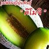 เมล่อน คิโมจิ Japan Melon Kimoji 10 เมล็ด