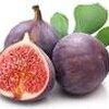 putple patlican fig 15เมล็ด/ซอง