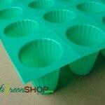 ถ้วยปลูกเขียวแบบบากก้นลึก 10 กล่อง