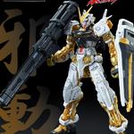P-bandai: RG 1/144 Gundam Astray Gold Frame 3000y