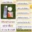 GEE Miracle Cleansing Gel (30ml.)(ขนาดใหม่) thumbnail 31