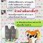 GEE Miracle Cleansing Gel (30ml.)(ขนาดใหม่) thumbnail 37