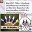 GEE Miracle Cleansing Gel (30ml.)(ขนาดใหม่) thumbnail 21