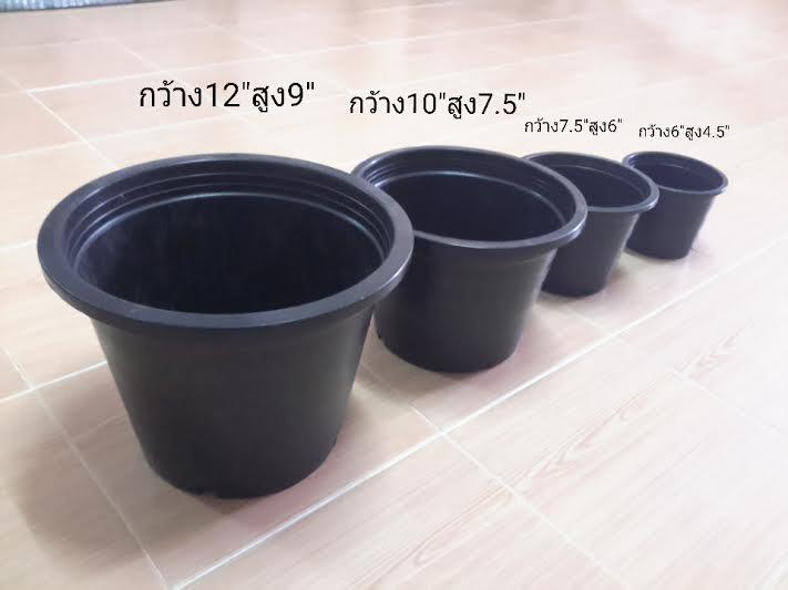 กระถางดำ ขนาด 12 นิ้ว