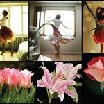 ไอเดียถ่ายภาพ ผู้หญิง ต้องคู่กับ ดอกไม้ LADY FLOWER